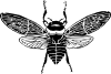 free vector Bee Top View clip art
