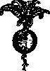 free vector Beet clip art