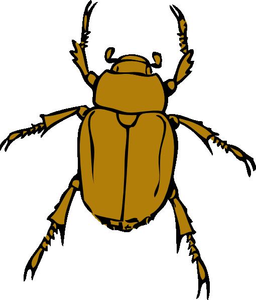 free vector Beetle Bug clip art