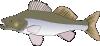 free vector Big Fish Candat Animal clip art