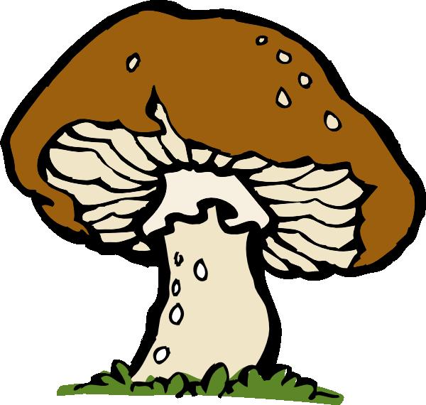 white mushroom clip art