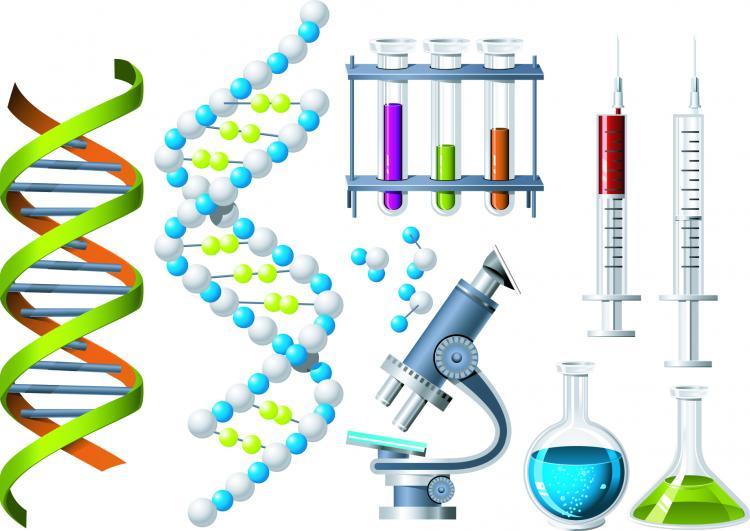 free vector Biochemistry theme icon vector