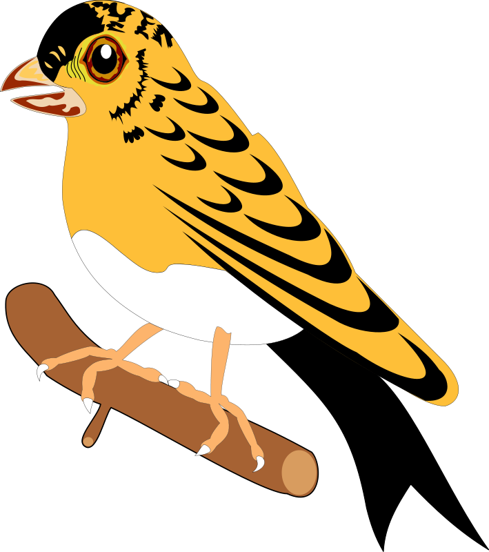 free vector Bird 25