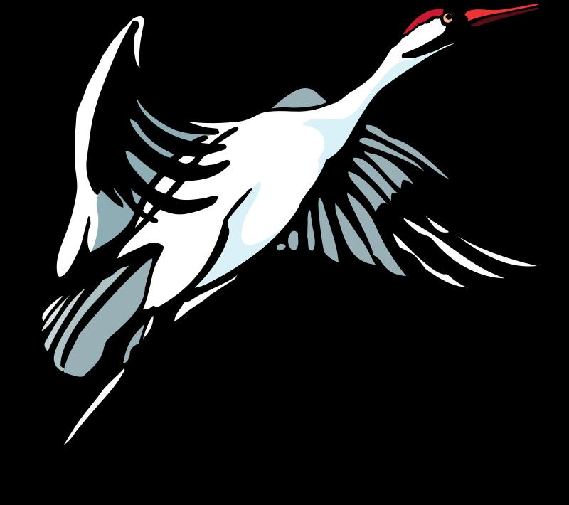free vector Bird 34