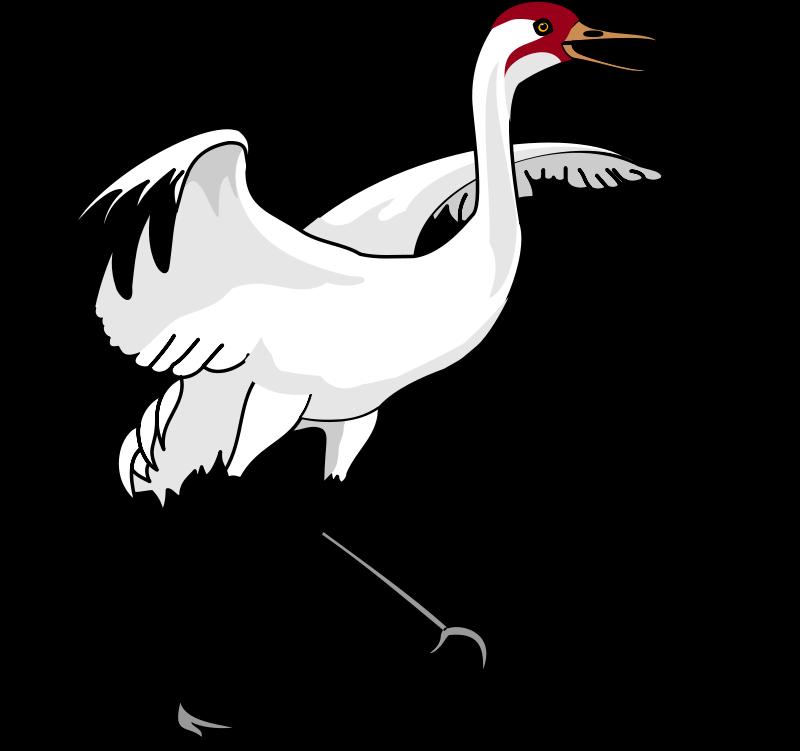 free vector Bird 35