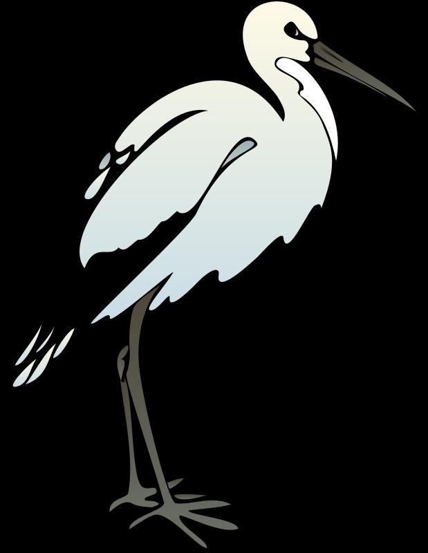 bird 41 free vector  4vector
