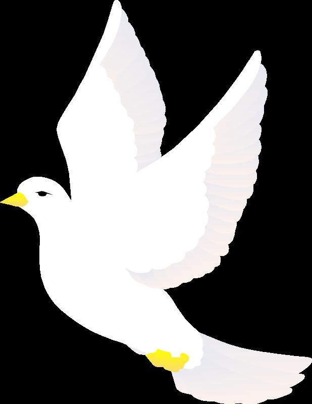 free vector Bird 70