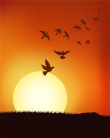 free vector Bird at sunset