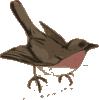 free vector Bird clip art