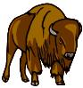 free vector Bison clip art