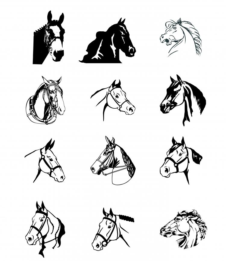 free vector Black and white horse vector
