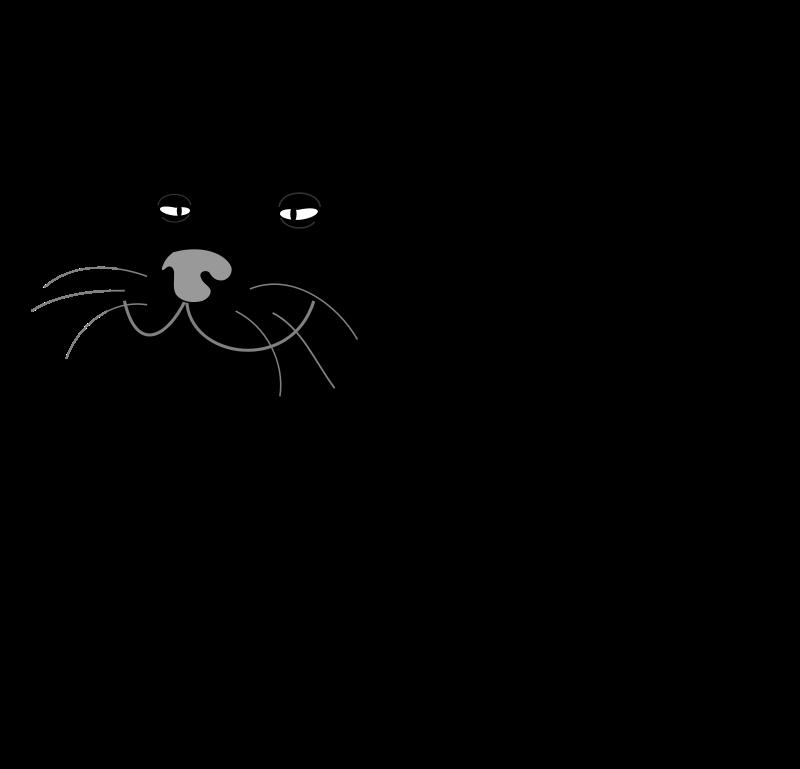 free vector Black Cat / Gato Negro