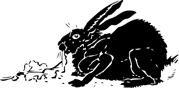 free vector Black Rabbit clip art