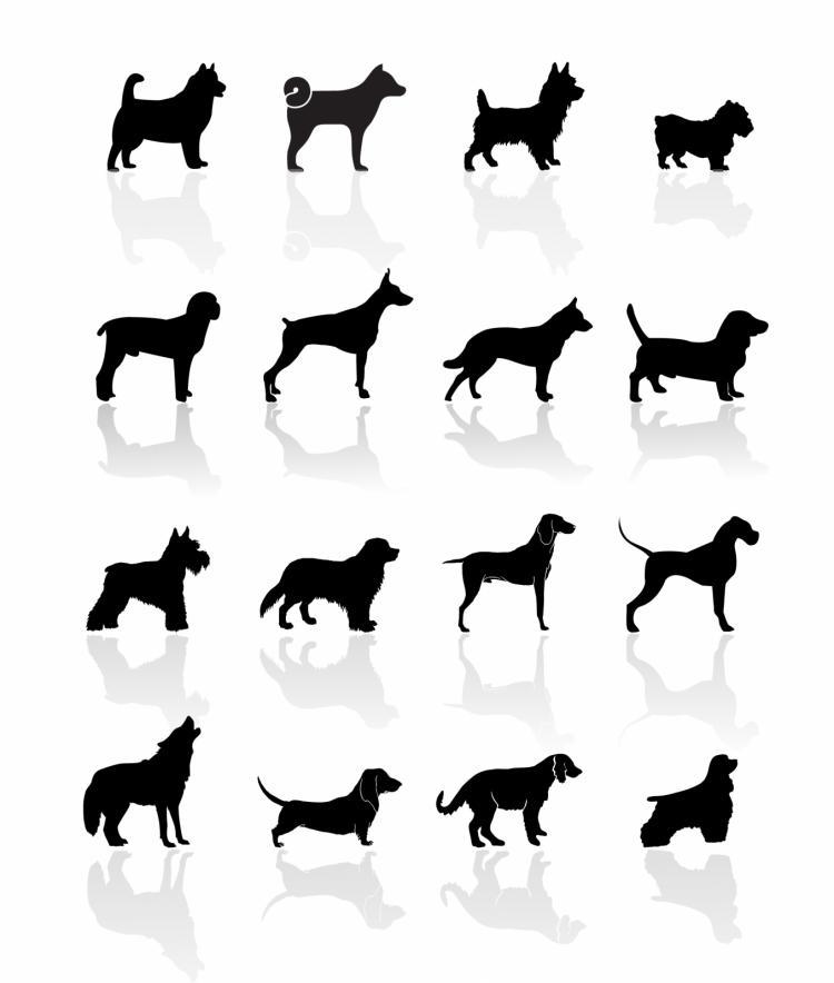 free vector Black symbols - dogs