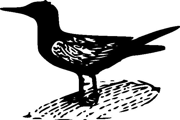 free vector Black Tern clip art