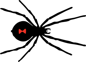 free vector Black Widow Spider clip art