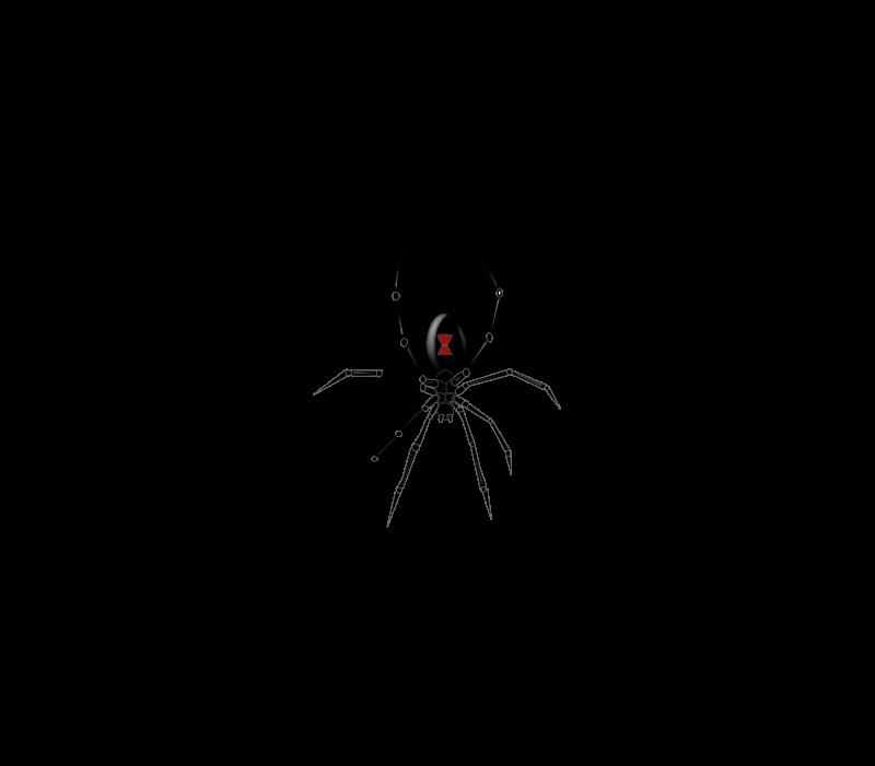 Arachnid vectors