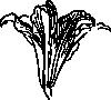 free vector Blossom clip art