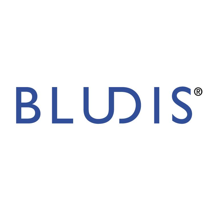 free vector Bludis