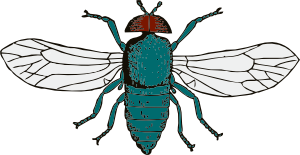 free vector Blue Bottle Fly clip art