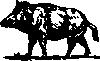 free vector Boar clip art