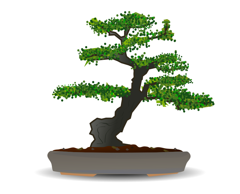 free vector Bonsai