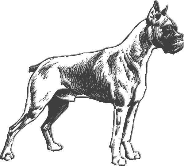 free vector Boxer clip art