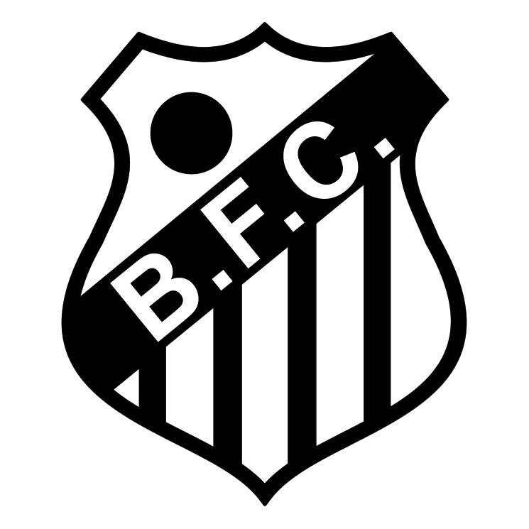 free vector Brasil futebol clube de santos sp