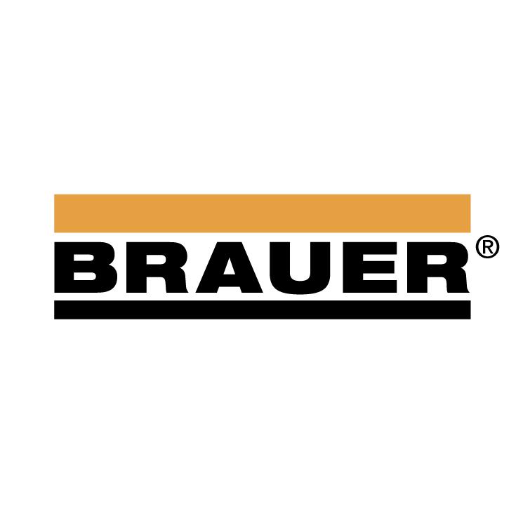 free vector Brauer