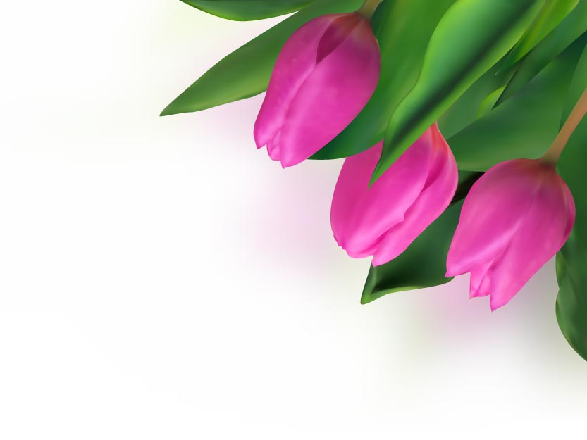 free vector Bright tulips 04 vector