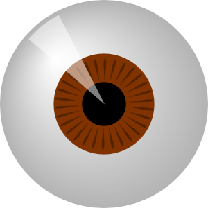 free vector Brown Eye clip art