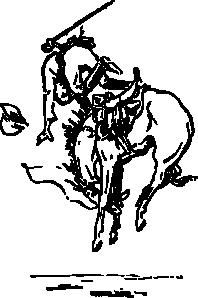 Kleurplaat T Shirt Bucking Horse Clip Art 108174 Free Svg Download 4 Vector