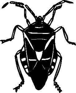 free vector Bug clip art 107342
