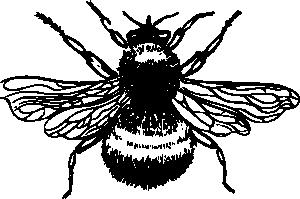 free vector Bumblebee clip art