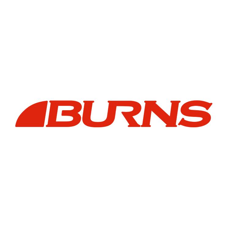 free vector Burns 0