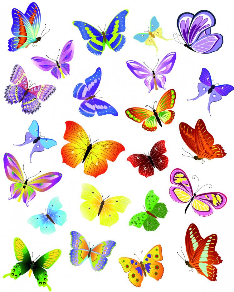 free vector Butterflies vector