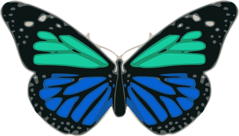 free vector Butterfly 02 Turquoise Blue