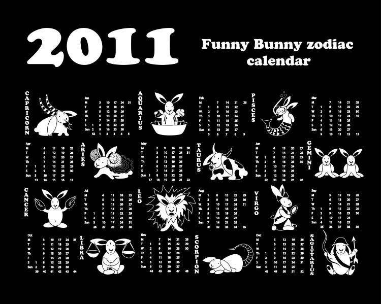 free vector Calendar year of the rabbit 2011 vector