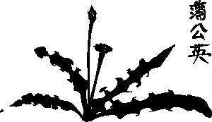 free vector Calligraphic Dandelion clip art
