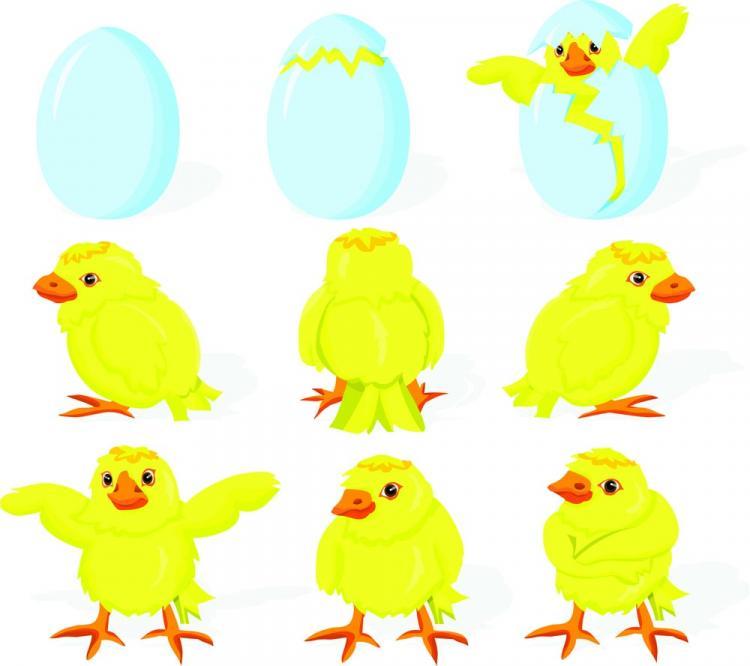 free vector Cartoon chicks break the shell 01 vector