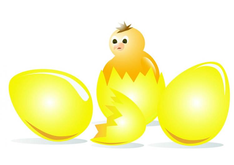 free vector Cartoon chicks break the shell 02 vector