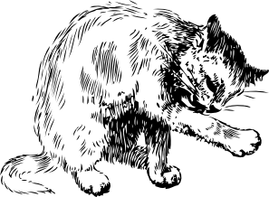 free vector Cat Washing Itself clip art