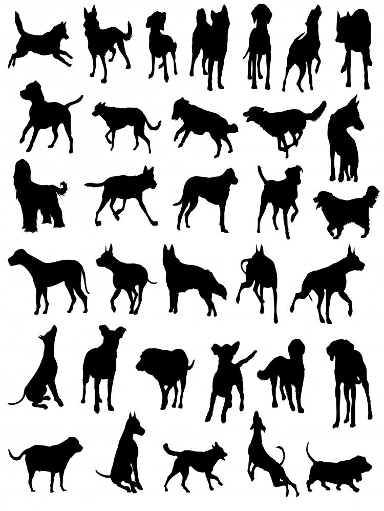 free vector Cats and dogs silhouette vector