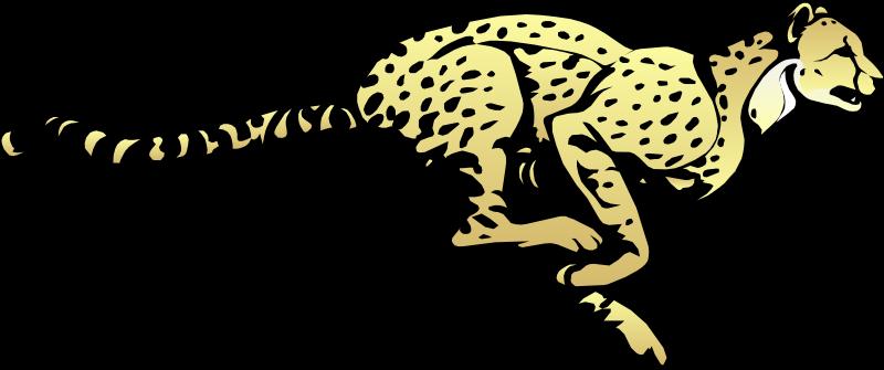 free vector Cheeta