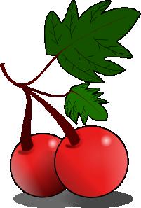 free vector Cherries Fruit clip art