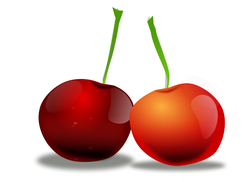 free vector Cherries