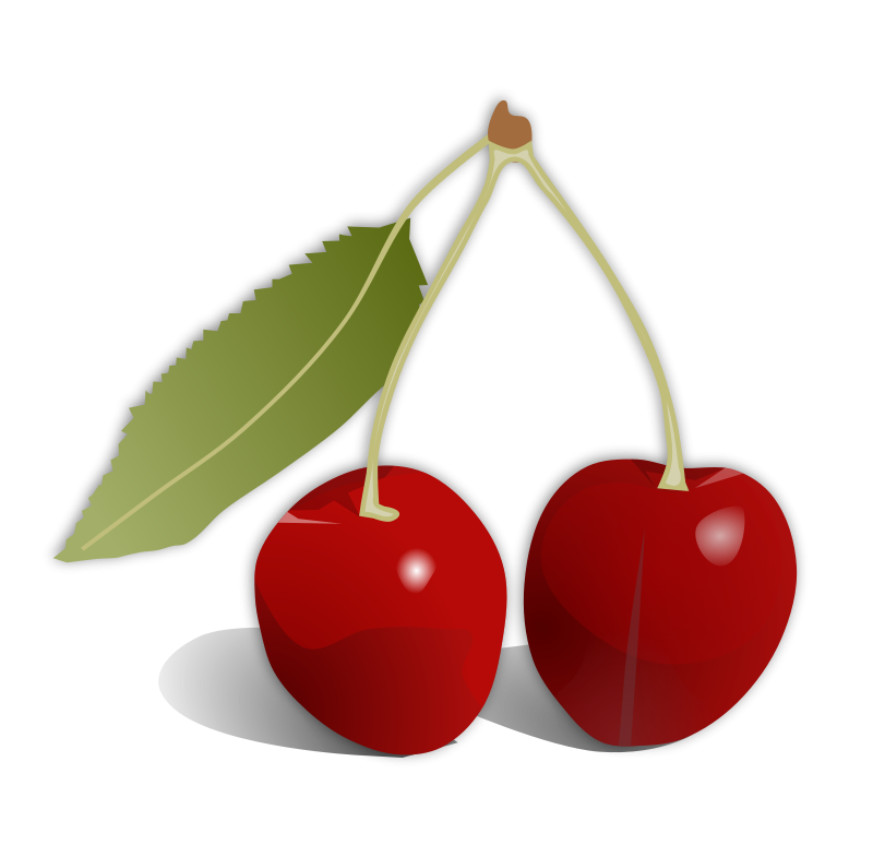 free vector Cherries