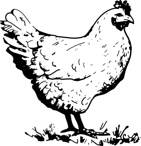 free vector Chicken clip art