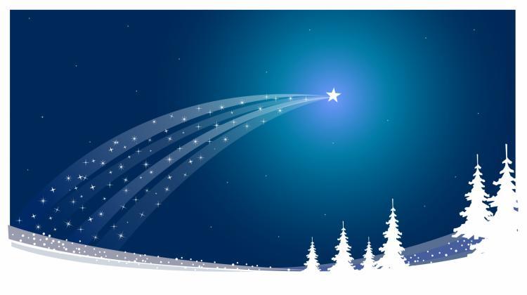 Christmas star Free Vector / 4Vector