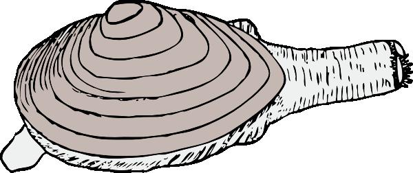 free vector Clam clip art